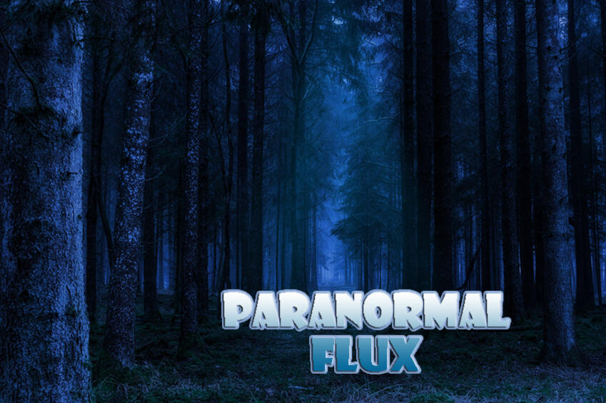 Paranormal Flux Forest Graphic